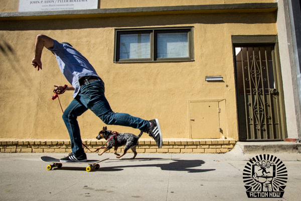 Action_now_dog_boarding_Article_wheelbase_magazine_Bandy (1 of 1)