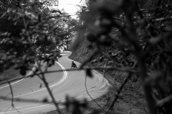 Taking lines, through the pines. Photo: Grove