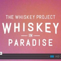 Whiskey In Paradise – Arbor Collective (Video)