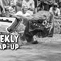 Adolescence Anarchy, Barreled by Branches, & Movie Mash-ups – Weekly Wrap-up: August 13- August 19, 2016